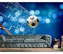 Фотообои Сетка с мячем
