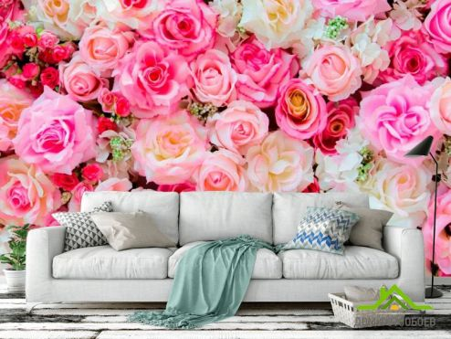 обои Розы Фотообои Розы