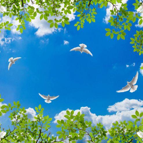 на потолок Фотообои Голуби в весеннем небе