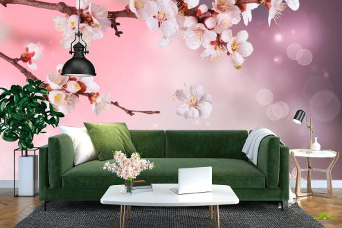 Вишня Фотообои Полевая вишня цветет