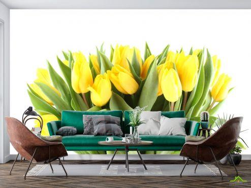 Тюльпаны Фотообои желтые тюльпаны