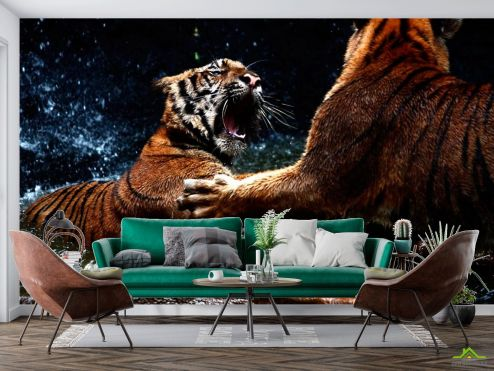 Тигры Фотообои Драка тигров купить