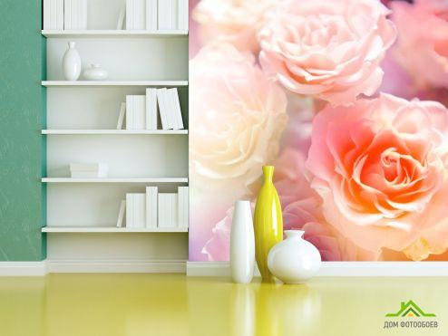 обои Розы Фотообои Кремово-бежевые бутоны