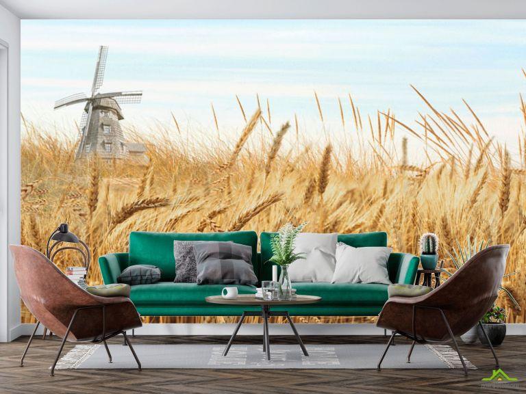 Фотообои Поле пшеницы