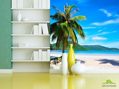 Пальмы Фотообои Пальма на пляже купить