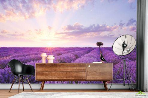 Природа Фотообои Лавандовое поле на восходе купить