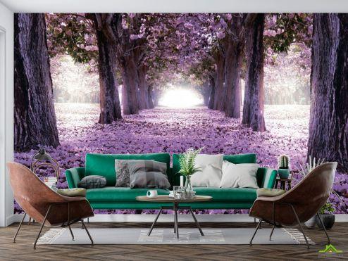 Природа Фотообои Цветущие деревья
