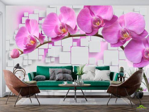 3Д  Фотообои Орхидеи