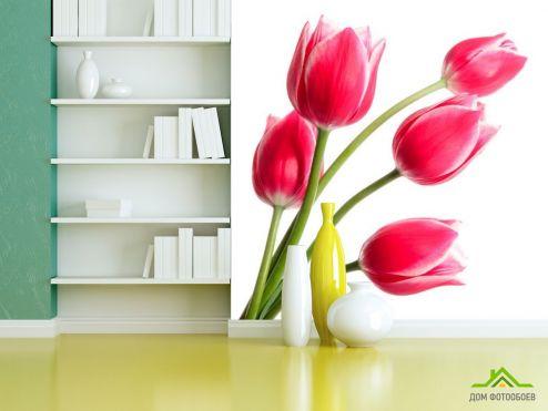 обои Цветы Фотообои Тюльпаны розовые
