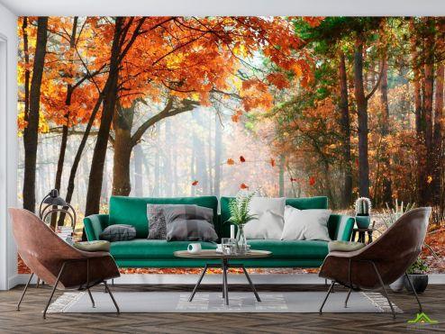 Фотообои Природа по выгодной цене Фотообои Падают листья