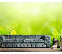 Фотообои зеленые росточки