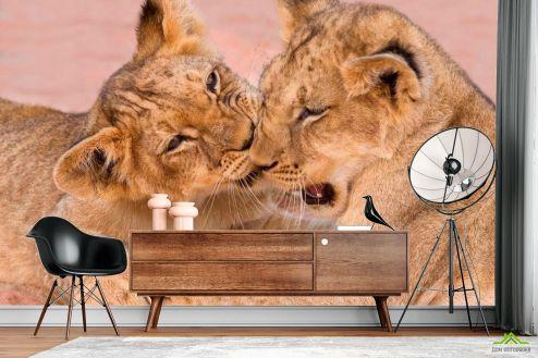 Тигры Фотообои Игра тигрят