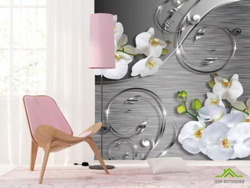 Серые  Фотообои Орхидея