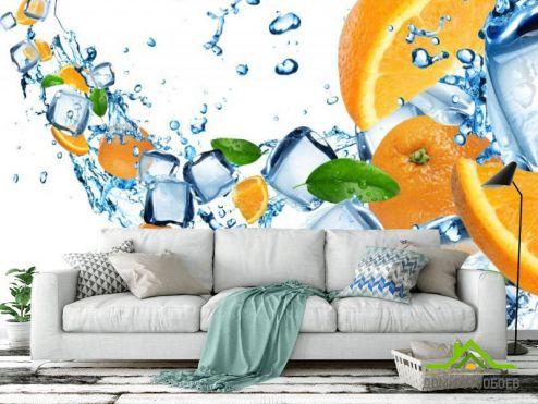 Еда и напитки Фотообои Апельсины и кубики льда