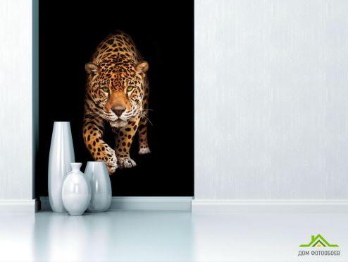 обои Животные Фотообои леопард