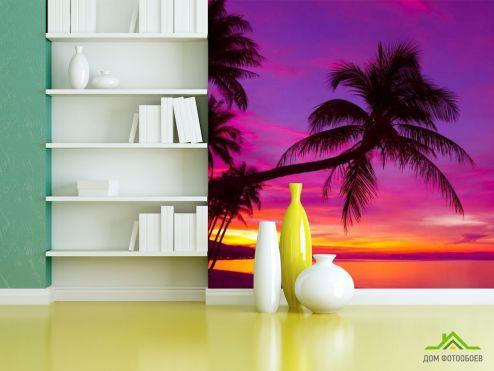 Фотообои разные по выгодной цене Фотообои пальмы