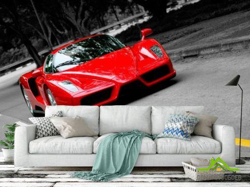 Фотошпалери автомобілі Фотообои FerrariEnzo