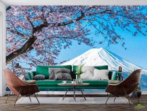 Горы Фотообои Гора, снег,цвет