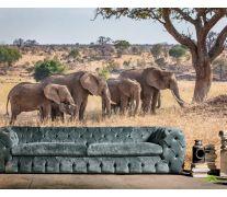 Фотообои слоны и слонята