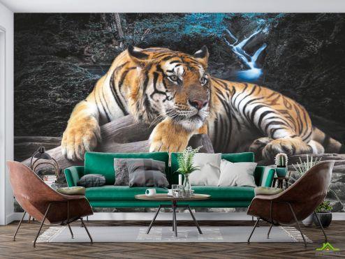 Животные Фотообои Тигр  купить