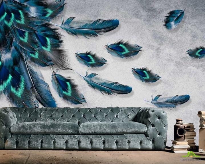 Фотообои Бирюзовые перья
