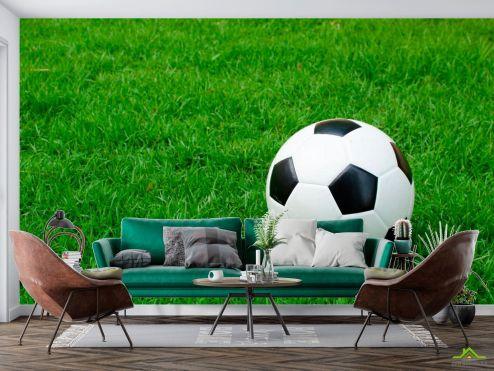 Спорт Фотообои Футбольный мяч