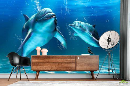 Дельфины Фотообои Игры дельфинов