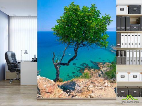 обои Море Фотообои Дерево на скале