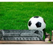 Фотообои Футбольный мяч