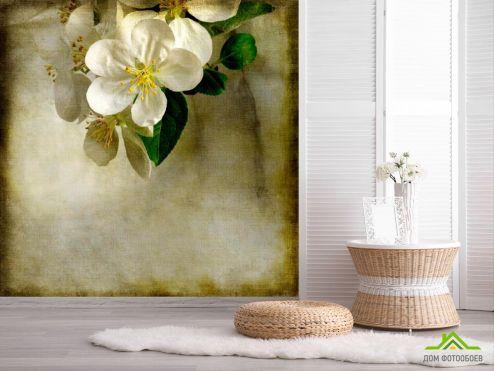 обои Цветы Фотообои Цветок вишни