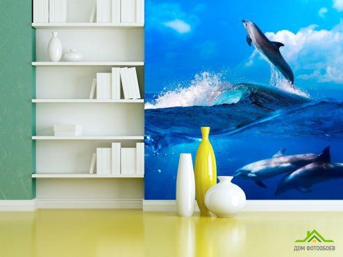 Дельфины Фотообои Дельфины на волнах купить
