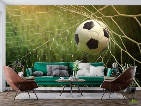 Спорт Фотообои мяч в воротах купить