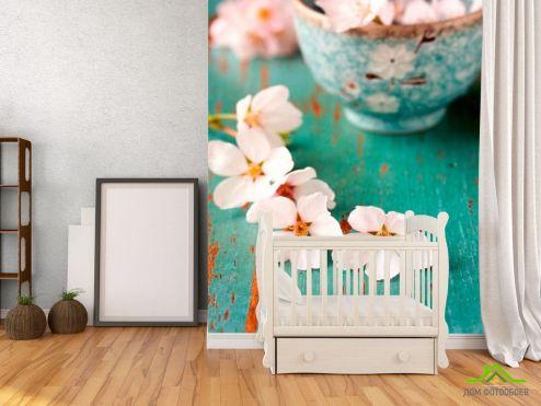 обои Абрикос Фотообои Цветы абрикоса в пиалке