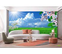 Фотообои абрикосовый цвет над зеленым полем