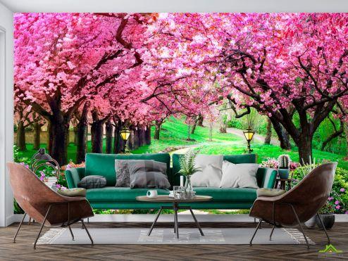 Фотообои Природа по выгодной цене Фотообои Тоннель из розовых деревьев