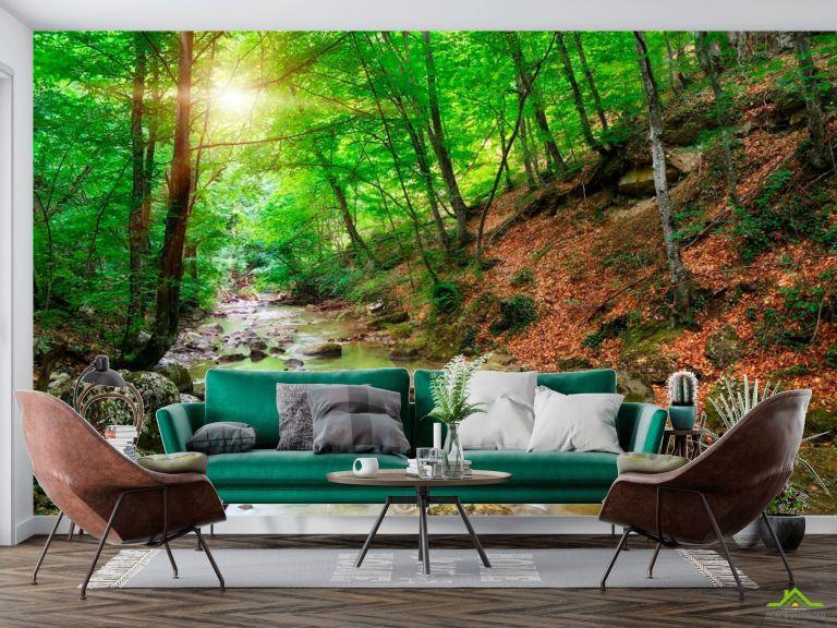 Фотообои В лесу, ручей