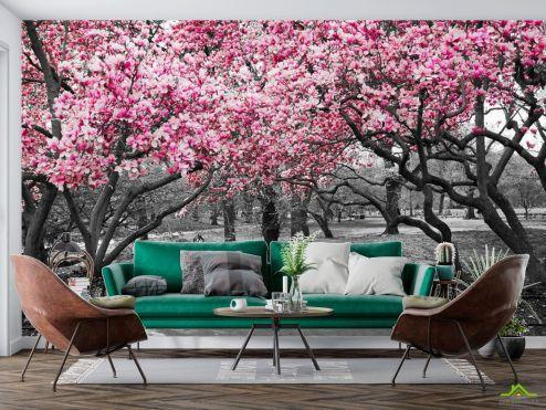 Расширяющие пространство Фотообои Розовые деревья в парке