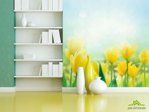 Тюльпаны Фотообои Тюльпаны желтые