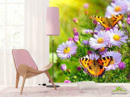 Насекомые  Фотообои Бабочки в цветах