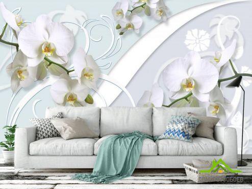 Серые  Фотообои Орхидеи 3д