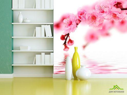 обои Цветы Фотообои Вишня в цвету