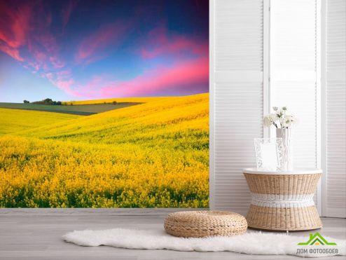 обои Природа Фотообои Полевые цветы