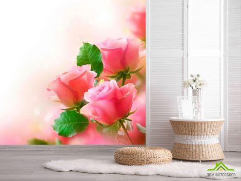 обои Цветы Фотообои Нежные розовые бутоны