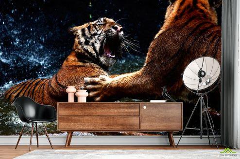 Тигры Фотообои Драка тигров