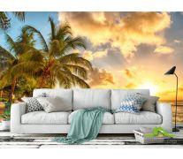 Фотообои пальмы над морем и желтые облака