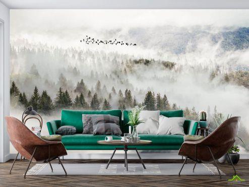 Фотообои Природа по выгодной цене Фотообои Птицы над туманным лесом