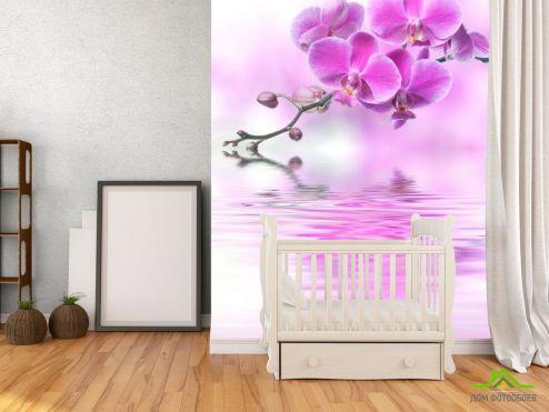 обои Орхидеи Фотообои розовая орхидея над водой