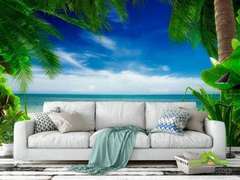 обои Пляж Фотообои Вид из-за пальмы