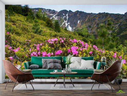 Фотообои Природа по выгодной цене Фотообои цветы на поляне в горах