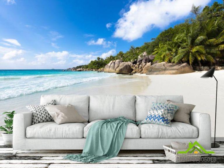 Фотообои холм с пальмами на берегу